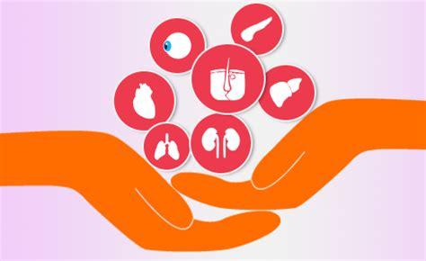 Organ Donation Research Paper Example - EssayEmpire